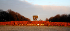 Orange hedge (Vigelandsparken) (DarkB4Dawn) Tags: park trees winter light orange nature fountain oslo norway vigelandpark canon hedge canon450d canonefs1855mmis darkb4dawn henrikbergerjrgensen henrikjrgensen