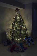 christmas2008_002