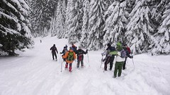 Descending to Govedartsi (John Spooner) Tags: xmas trees snow bulgaria rila creativecommons snowshoeing govedartsi rilamountains govedartzi govedarci   govedarzi