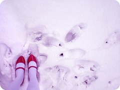 Step by step... (a Ae) Tags: life street winter shadow red snow cold feet way shoes child legs magic surreal flake fair story passed step unreal tale maryjane patente stepbystep snowhite