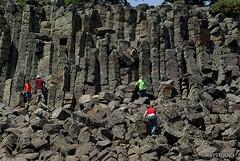 IMGP4290_resize (RayStudio) Tags: yellowstone raystudio yellowstonepark 080625