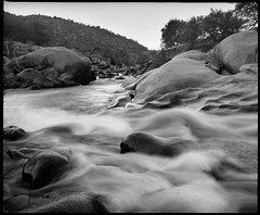 C-curve turn | Three rivers, Sequoia, CA, USA (ART SRISAK | PHOTOGRAPHY) Tags: bw mamiya film mediumformat waterscape monart 123bw autaut rb67pros filmforward