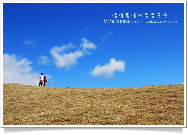 【清境農場青青草原】過年去哪玩?南投清境農場-青青草原