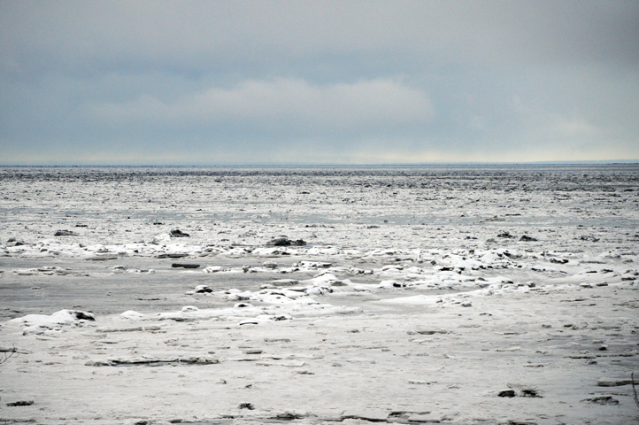 cook inlet_1614 web
