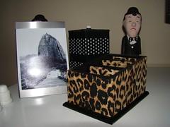 Porta Controle de Oncinha (Artes Biazinha) Tags: radio dvd handmade cd artesanato gift felino decorao controle presente televiso ona decoupage oncinha remoto organizador organizao