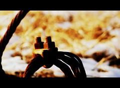 Rust in the Snow (mightyquinninwky) Tags: snow field grass geotagged dof bokeh farm nuts rusty indiana farmland depthoffield southernindiana cables bolts letterbox invite picnik invited cinemascope openfield edgeoftown canoneosdigitalrebelxti tristateareakyinil evansvilleindiana diamondstars vandenburghcountyindiana agriculturalarea geo:lat=379312 geo:lon=87564726 bestofformyspacestation