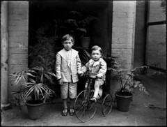 Two small boys, one on tricycle