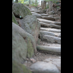steps to ... (_nejire_) Tags: fab japan stone canon eos 50mm tokyo kiss dof bokeh path stones steps perspective explore 東京 9pm 50mm18 korakuen 後楽園 koishikawakorakuen 小石川後楽園 fave20 niftyfifty 10faves 20faves canonef50f18ii nejire 400d eos400d canoneos400d kissx fave10 mhashi 3211174g040am 7917345g930pm8april