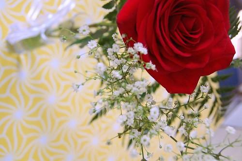 roseflora