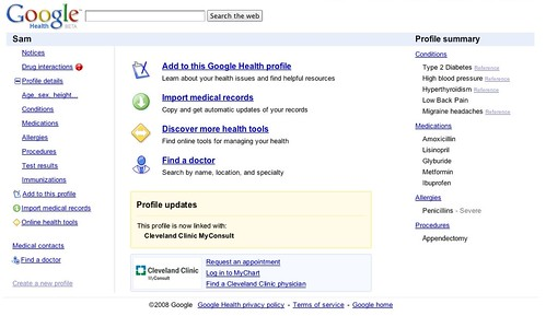 Google Health Interface