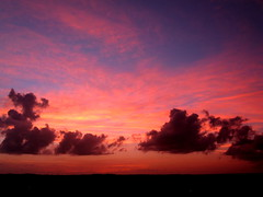 A beautiful end to a beautiful day in Turks and Caicos (cosmo-girl) Tags: pink sunset sky clouds de fire soleil cloudy dusk horizon tranquility colourful eveningsky pinksky tranquil wispy darkclouds couches pinkclouds asunset tropicalsunset cumulusclouds skyatdusk perfectsunsetssunrisesandskys couchesdesoleil
