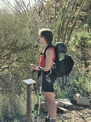 Hiker 06 (a987checkers) Tags: saguaronationalpark wassonpeak