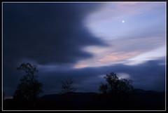 Venus over my landscape (spodzone) Tags: blue trees sky nature silhouette night clouds dark landscape dawn scotland highlands venus glen astrophotography planets astronomy saturn lowkey glenaffric affric