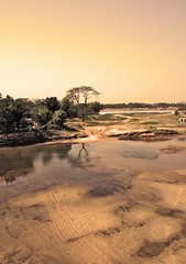 (noprayer4dying) Tags: reflection tree beach water sepia canon river landscape 350d boat sand sandy reflect infrared infra bangladesh boatman durgapur netrokona susong aplusphoto birishiri noprayer4dying someshawari