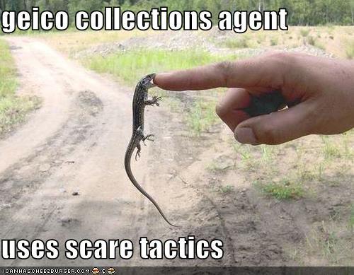 gecko bites finger