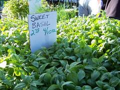 Basil (Kate Antoniades) Tags: farmersmarket herbs basil publicmarket