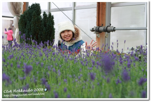Hokkaido_0507