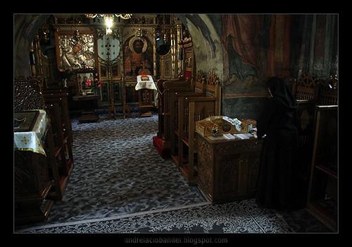 manastirea dintr-un lemn (1)