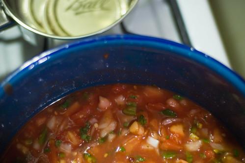 salsalicious (by bookgrl)