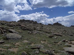 HPIM1217 (jimvickers) Tags: colorado elk rockymountainnationalpark continentaldivide bouldercreekpath summer2008
