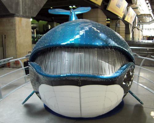 Baleine face