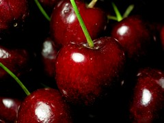 cher(r)ish (tallawah75) Tags: red summer macro fruit cherry purple bigmomma challengeyouwinner matchpointwinner colorescolours ltytrx5 ltytr2 ltytr1 ltytr3 a3b fotocompetition fotocompetitionbronze storybookwinner