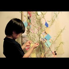 wish... (shotam) Tags: summer texture season nikon pattern daughter decoration lifestyle 大阪 osaka 2008 asuka tanabata taisho 50mmf14d 七夕 飾り d80 大正