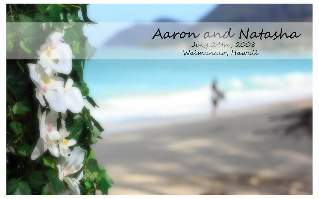 The wedding of aaron and natasha