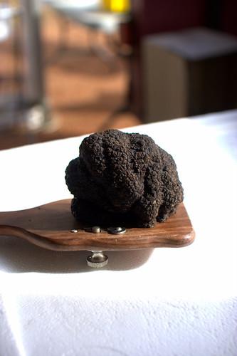 Manjimup Black Truffle