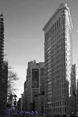New York 069