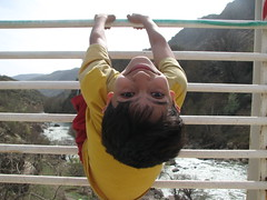 khashayar upside down (shahram naghipour) Tags: bridge river insideout khashayar freephotos