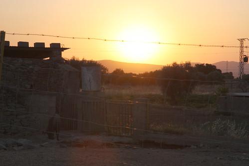 Sunset over pig pen