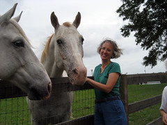 donna with horses