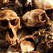 Benin - Voodoo Skulls