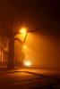 Foggy Evening, Utrecht (lambertwm) Tags: longexposure shadow mist tree misty fog night lights evening utrecht nacht foggy boom avond schaduw viewcount mistig lwmfav lwmtag