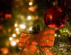 Christmas here, Christmas there, Christmas is Everywhere!!! (jon.noj) Tags: christmas red green ball gold lights bokeh christmastree ribbon 2008 cubism bej bokehlicious abigfave platinumphoto flickrdiamond theunforgettablepictures jonnoj theperfectphotographer goldstaraward jonbinalay