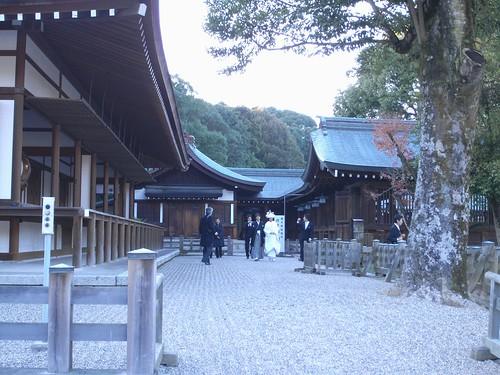 橿原神宮(2008大絵馬)-10