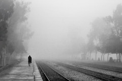A Walk in The Fog (AHMED...) Tags: morning deleteme5 winter pakistan blackandwhite bw white black deleteme deleteme2 deleteme3 deleteme4 deleteme6 deleteme7 nature station fog person saveme4 alone saveme5 saveme6 saveme savedbythedeletemegroup saveme2 saveme3 saveme7 walk tracks railway saveme10 saveme8 saveme9 ahmed sind tress sindh muhammad mehrabpur