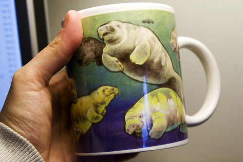 BEST CUP EVER!!!@#!@#