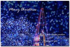 Christmas Card-2008