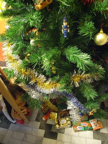 你拍攝的 聖誕樹下的娃娃。