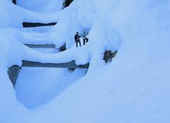 La traversée du bisse (JMVerco) Tags: winter snow photomanipulation hiver creative neve neige inverno création creazione flickrsmasterpieces jmlinder
