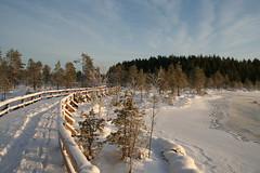 IMG_8928 (Damork) Tags: lumi j seitseminen soijastensuoluontopolku