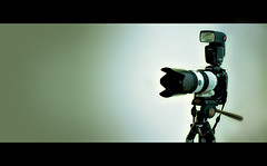 Pride and Joy (Su Inc) Tags: life camera flower lens photography photo still sony flash tripod gear petal equipment hood alpha ssm a700 sal70200g pfogold pfosilver hvl58am pfoisland06