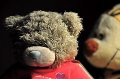 Can I tell you a secret? (Armando Maynez) Tags: bear light night toy sadness stuffed nikon doll sad teddy spotlight indoors encasa nikkor dim armando dentro cheerup inhouse dimlight d90 singlelight 18200vr myfacebook maynez