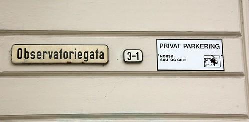 Privat parkering for norsk sau og geit i Observatoriegata