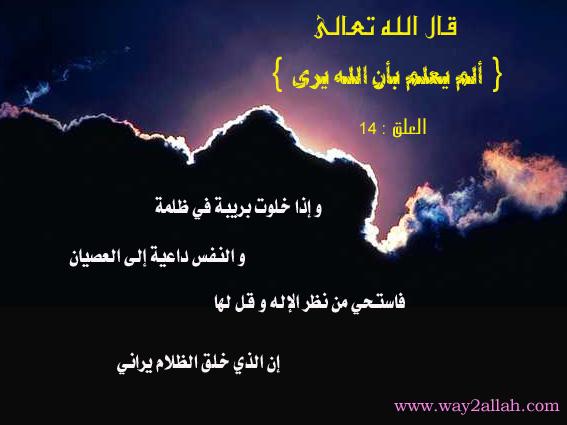 3489726758_9a79828b21_o.jpg