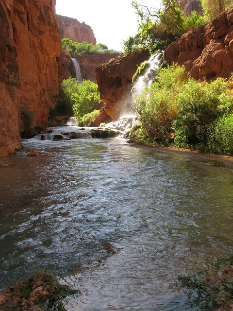 mooney falls in sight