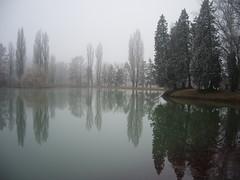 IMGP8754 (gzammarchi) Tags: lago italia natura nebbia albero paesaggio riflesso pianura camminata itinerario castelsanpietrobo
