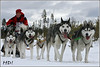Heidi Vogel, long distance musher, Germany